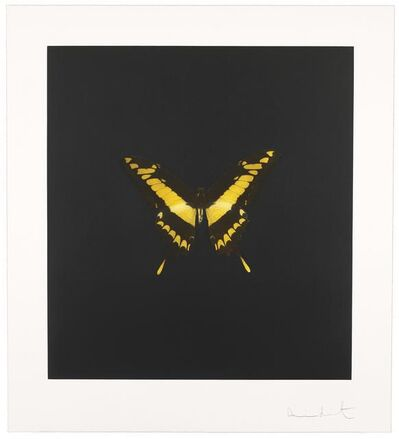 Damien Hirst, 'The Souls on Jacob's Ladder Take Their Flight', 2007
