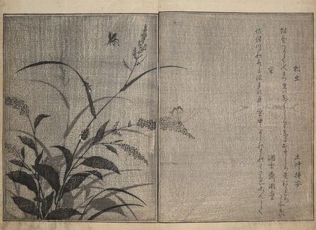 Kitagawa Utamaro, 'Tree Cricket and Firefly', 1788