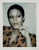 Andy Warhol, 'Ladies and Gentlemen (Iris)', 1974