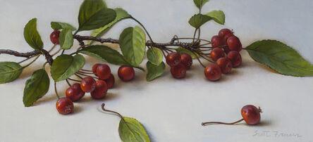 Scott Fraser, 'Red Crabapples', 2019