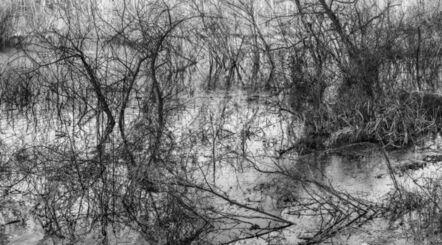 Richard Skoonberg, 'River Etching', 2020
