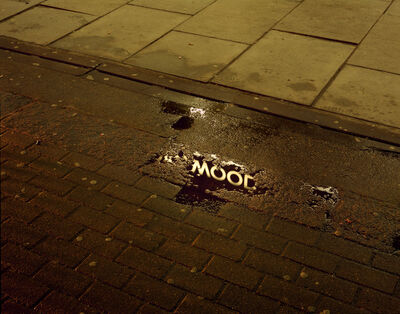 Rut Blees Luxemburg, 'Oakwood - series Picadilly's Peccadilloes', 2007