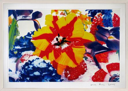 Marc Quinn, 'Six Moments of Sunrise (GT 4)', 2008