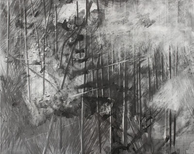 Mauro Giaconi, 'Fuga (leak)', 2015