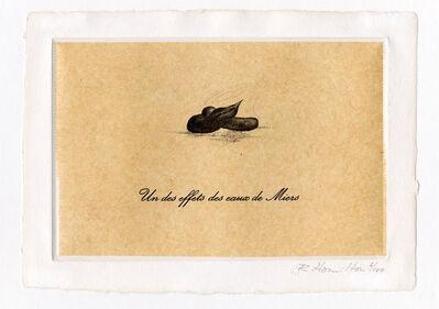 Richard Hamilton, 'Un des Effets des Eaux de Miers', 1973