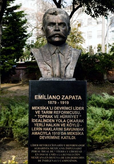 Zeyno Pekünlü, 'Zapata İstanbul'da / Zapata in Istanbul', 2013