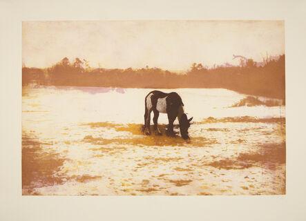 Peter Doig, 'Pinto', 2001