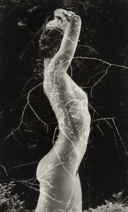 Ruth Bernhard, 'Symbiosis', 1971