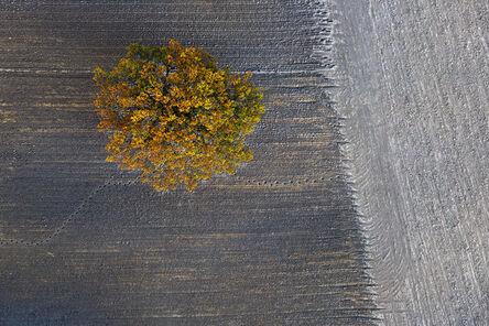Kacper Kowalski, 'Autumn #11'