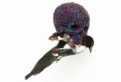 Jan Fabre, 'Skull With Magpie', 2001