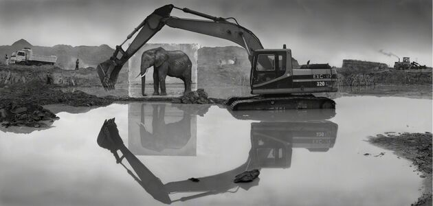 Nick Brandt, 'Quarry with Elephant', 2014