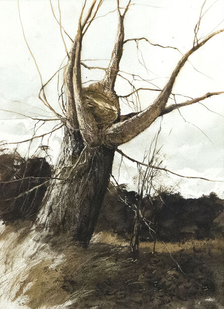 Gregory Sumida, 'Approaching Storm, New Branches', 1972