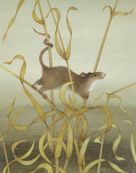 Harriet Bane, 'Harvest Mouse'