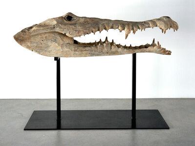 Quentin Garel, 'Study of Crocodile', 2010