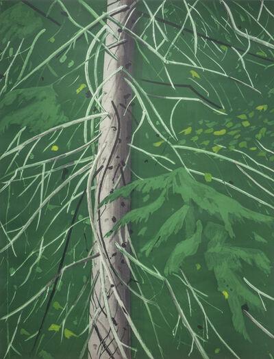 Alex Katz, 'Spruce', 1994