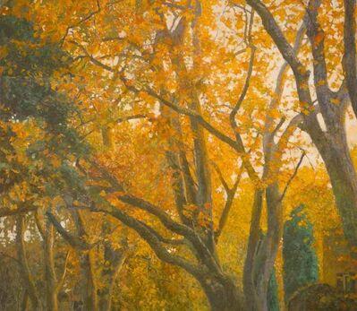 Nicholas Verrall, 'Autumn in the Alpilles', 2020