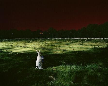 Dhruv Malhotra, 'Untitled'
