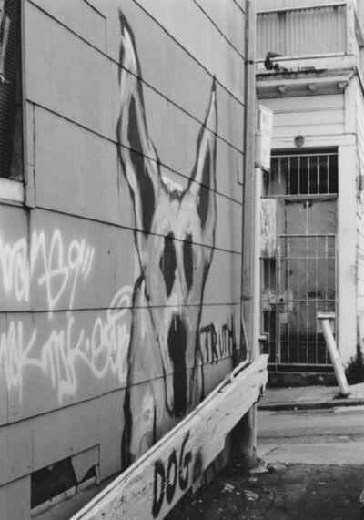 Arabella Colton, 'Wall Dog — Pigeons, Fresno Alley, San Francisco 1992 ', 1992