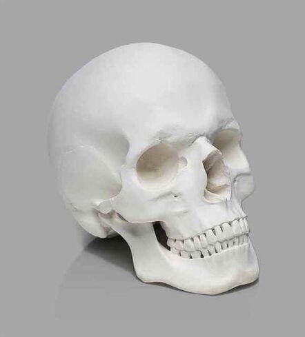 Katharina Fritsch, 'Totenkopf (Skull)', 1997-1998