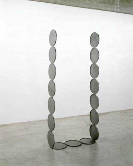 Nicole Wermers, 'Untitled Forcefield (tray portal)', 2006