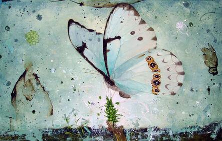 Eleanor Miller, 'Translucent Form', 2013