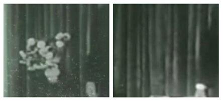 Suzanne Seesman, 'Lost Worlds on Television, Stills (Lacan)', 2013