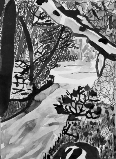Carl Baratta, 'Fern Dell Trail', 2020