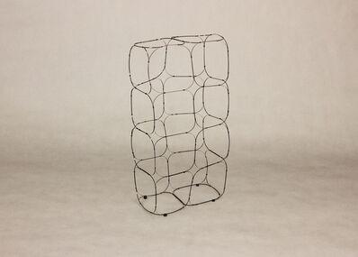 Kawashima Shigeo, 'Cellular Matter', 2017