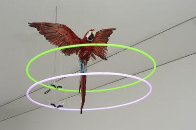 Shezad Dawood, 'The Jewels of Aptor II', 2010
