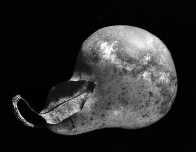 Paul Caponigro, 'Pear, New York City', 1964