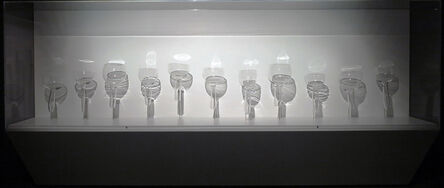 Bohyun Yoon, 'Glassorganism', 2013
