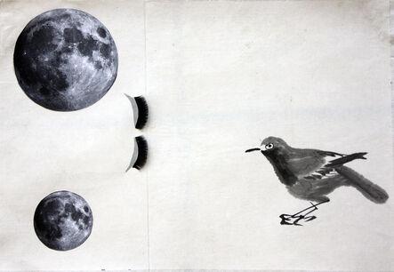 Ayelet Zohar, 'Bird of Lashes', 2007-2014