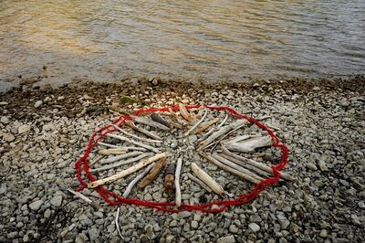 Barbara Amos, 'Beach: Campfire Ban', 2017