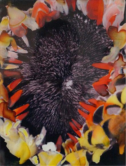 Darío Basso, 'Body Flower 15', 2010