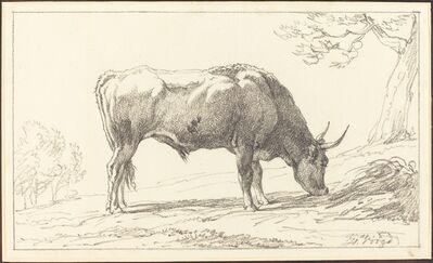 Hendrik Voogd, 'A Cow Grazing'