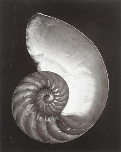 Edward Weston, 'Edward Weston: His Life and Photographs [SIGNED]', 1979