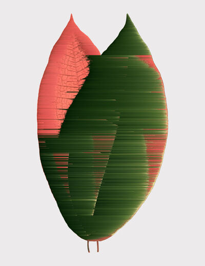 Andrea Wolf, 'Miconia Calvescens, var. 076', 2020