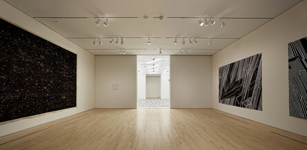 """'Installation view """"Field Conditions""""', 2012"""