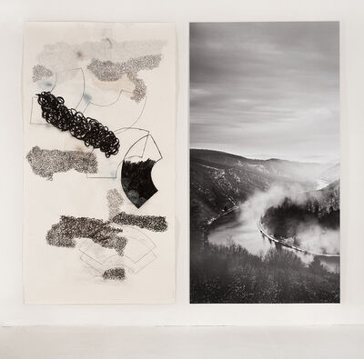 Denise Green, 'The Saar (and Subjectivity) Section 4', 2014