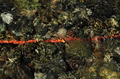 Barbara Amos, 'Line of Clarity', 2016