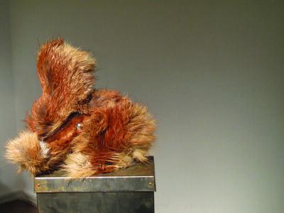 Nikola Dzafo, 'The Rabbit Museum'