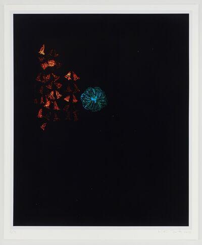 Kiki Smith, 'Haunted III', 2012