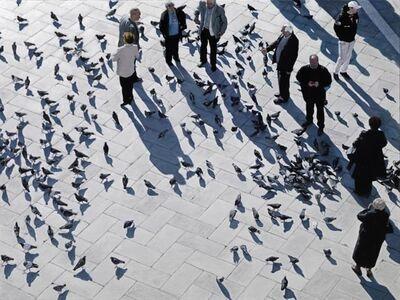 Rosalyn Bodycomb, 'Piazza San Marco', 2008