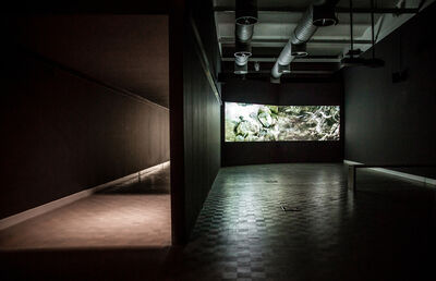 Gilad Ratman, ''Four Works' installation view: '588 Project'', 2015