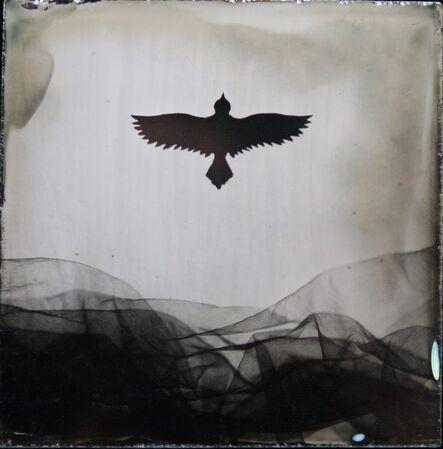 Angie Brockey, 'Bird', 2020