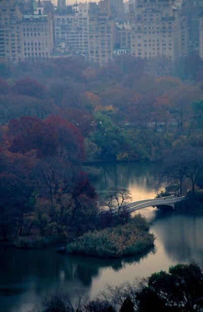 Joan Lemler, 'Autumn Reflected'