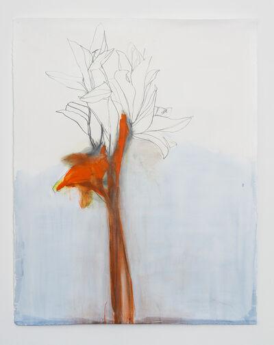 Andrea Rosenberg, 'Untitled 49.15', 2015