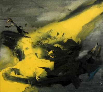 Jop Vissers Vorstenbosch, 'Situatie gewijzigd', 2013