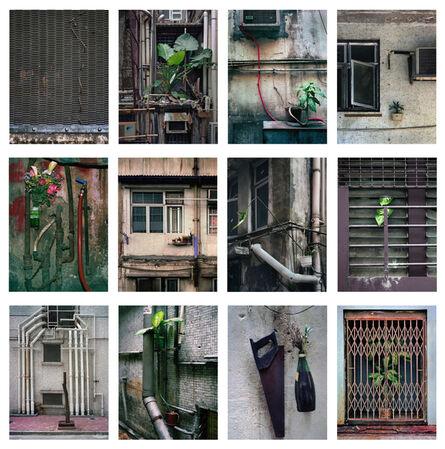 Michael Wolf (1954-2019), '#10, Hong Kong Flora 1, MFT group', 2014