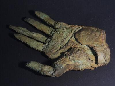 Dietrich Klinge, 'Hand 122', 2021